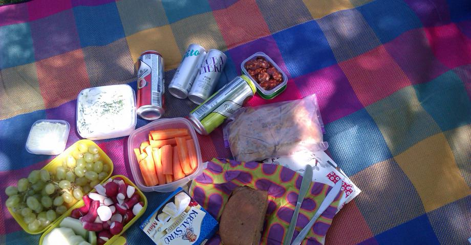 Picnic & frisbee in Riegrovy sady